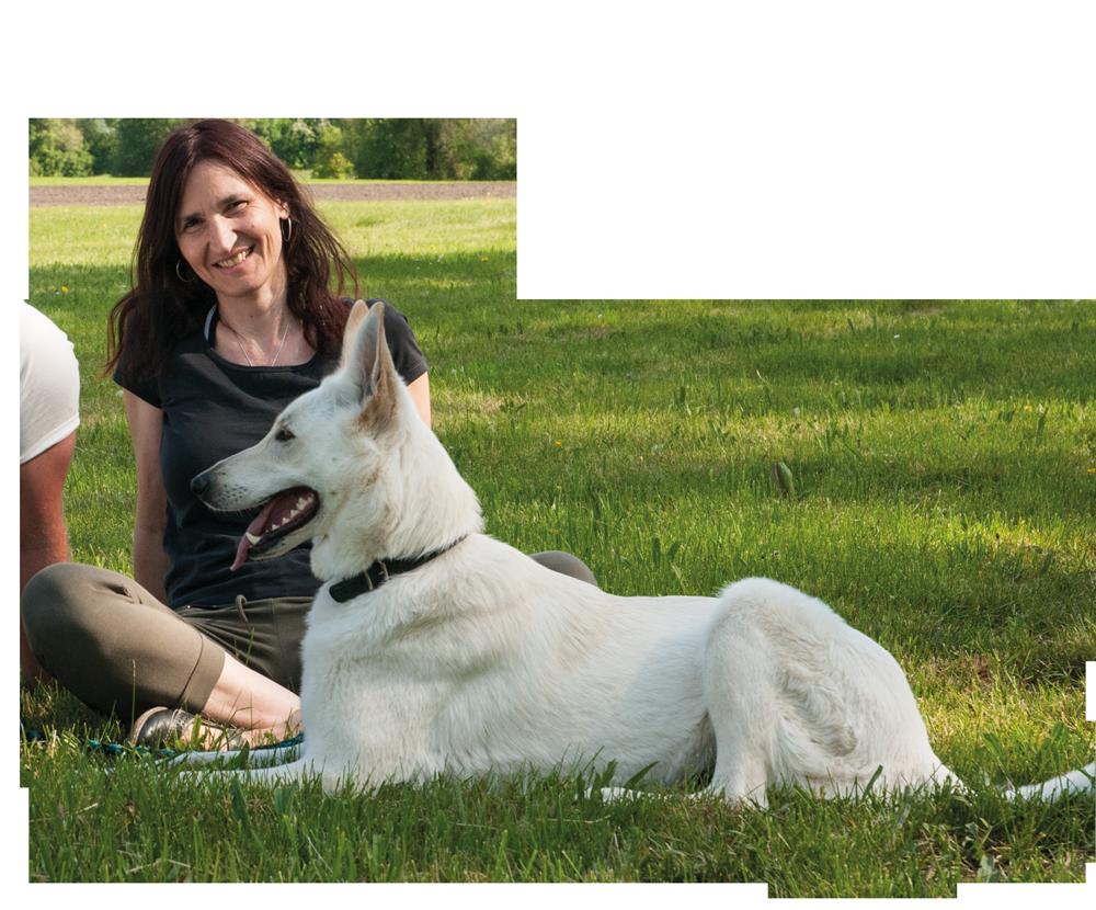 Stressfrei Hund und Mensch, Hundetraining und Problemhundtherapie, Entspannungstraining und Autogenes Training und Ganzheitliche Therapie für Hund und Mensch, Langenau, Baden Würrtemberg Ulm